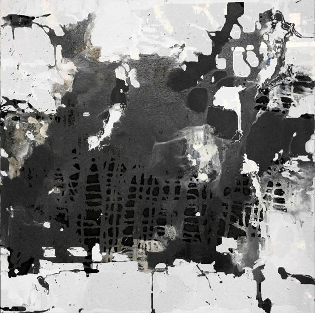 Ash Field_Black White