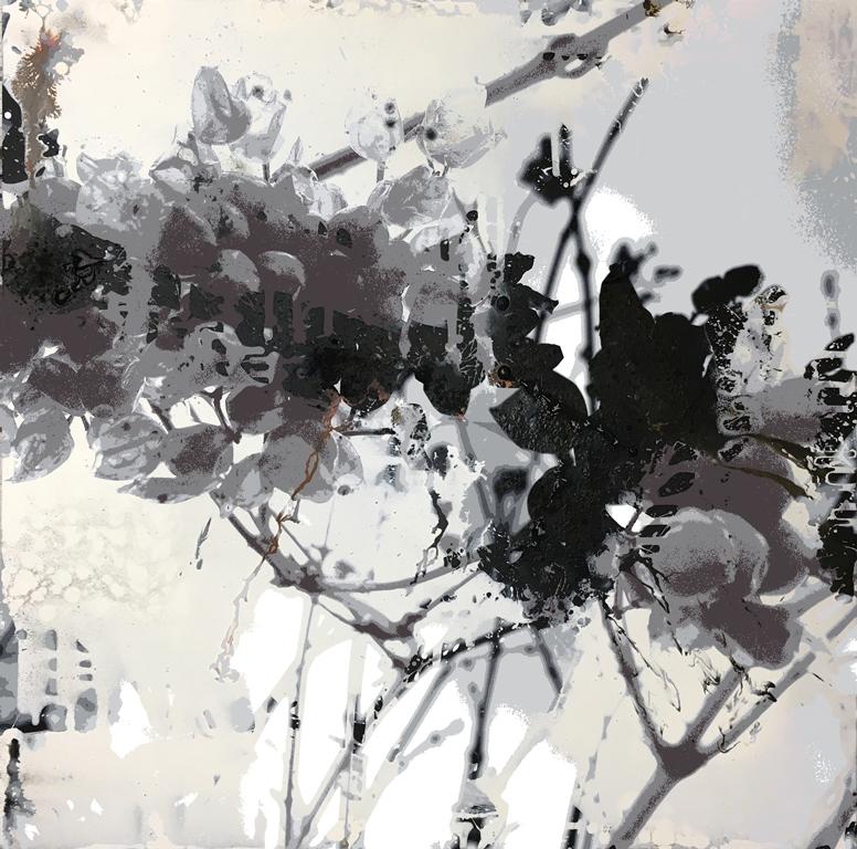 White Field_1_80 x 80_11,6 MB_Beerenzweig