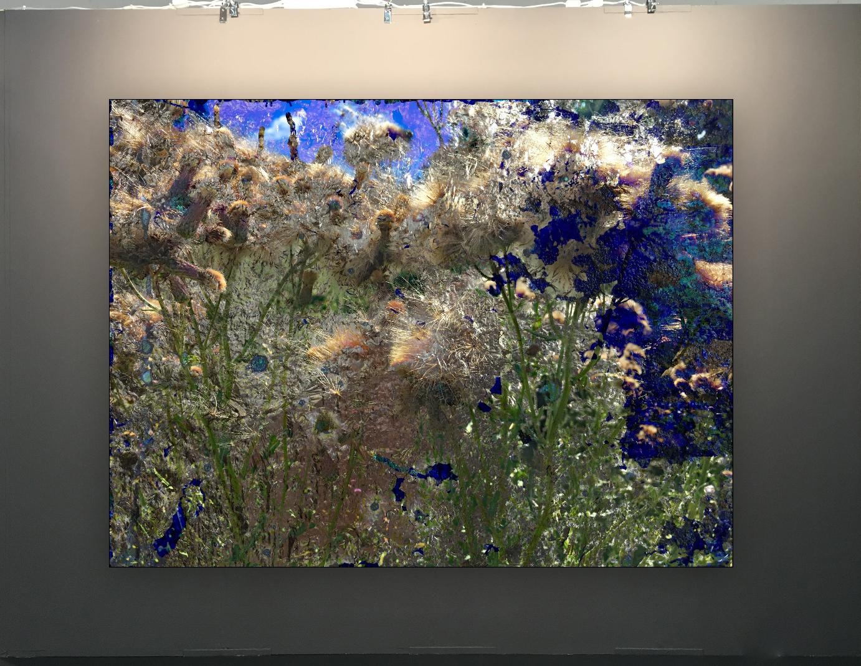 2019-08-Landscape