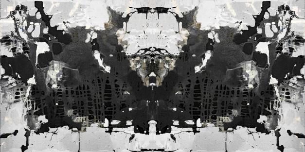 Ash Field _Black White gespiegelt