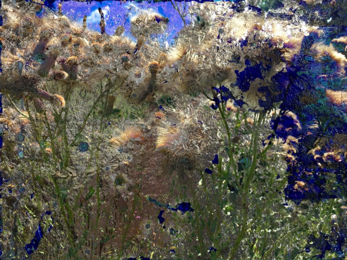 Landscape Art-2019