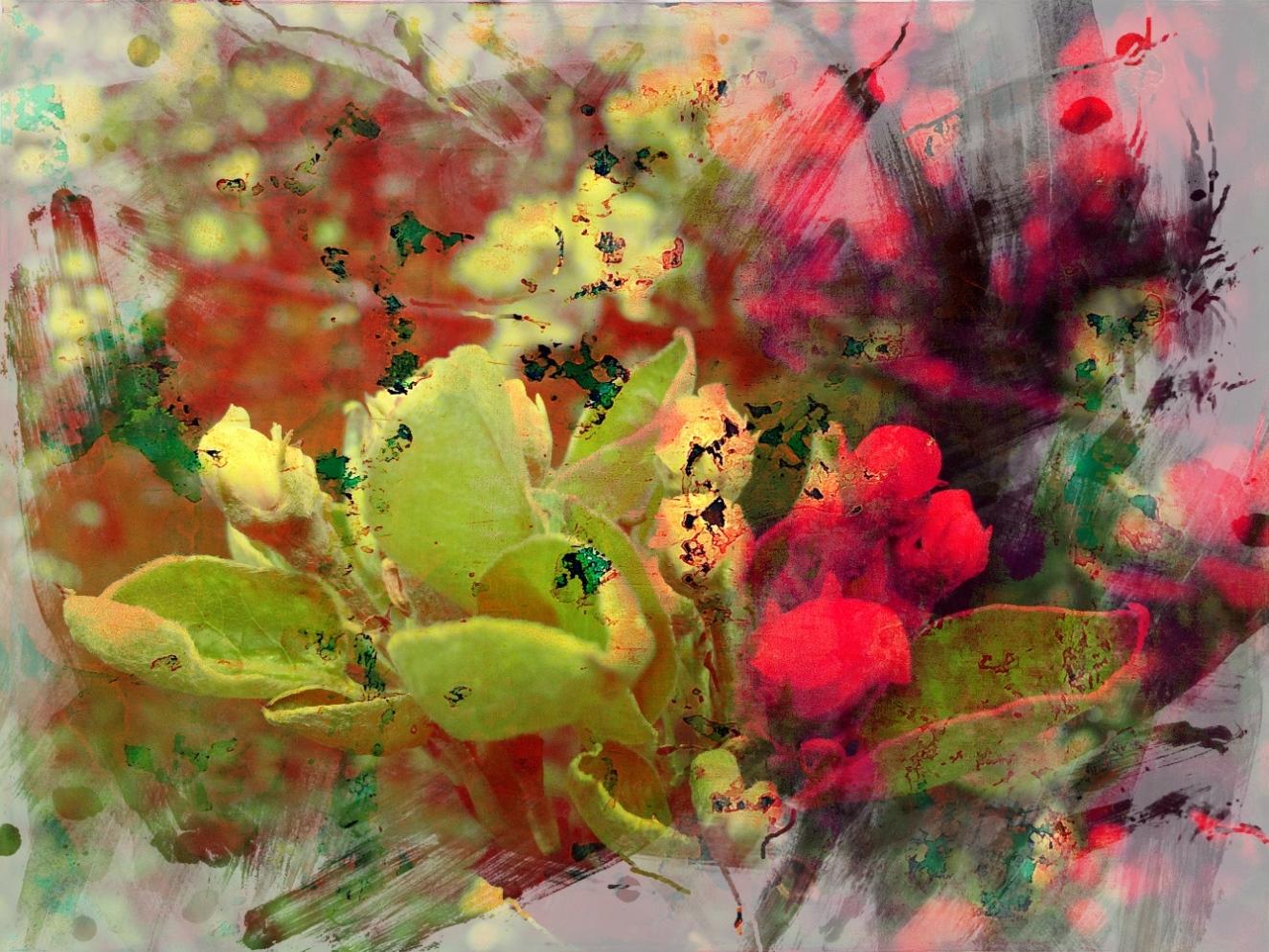 Landscape Colorful 1-1
