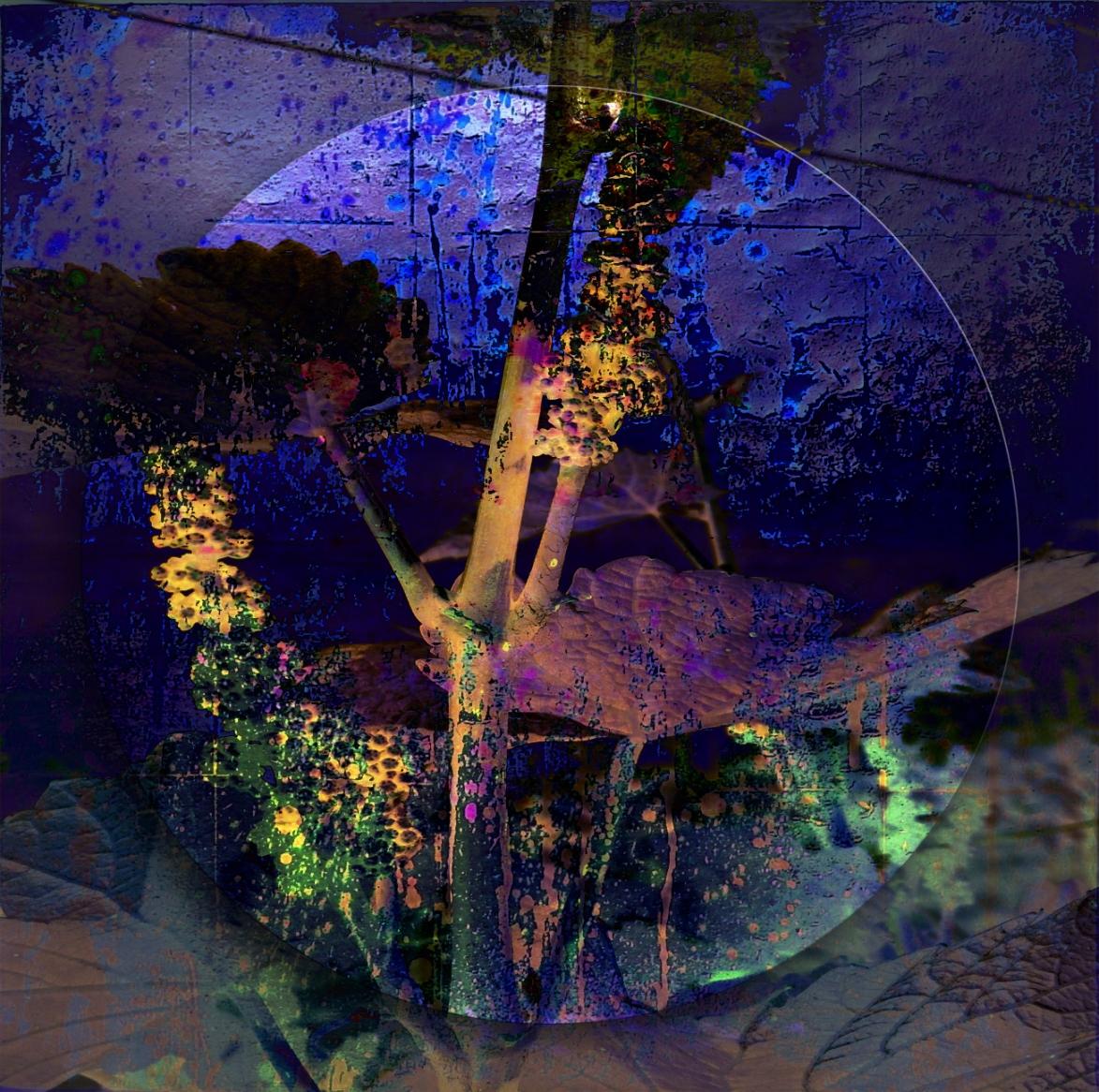 12-08 Mixed Media Blattgold Einwand 40 x 40 cm-Rebe_Mond-1